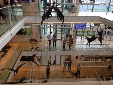 Il fascino del museo di Renzo Piano invade notte a Trento