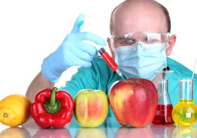 cibo OGM